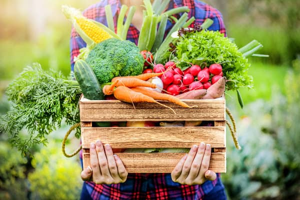 a box of healthy vegetables