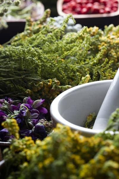 herbs to improve hormonal imbalance
